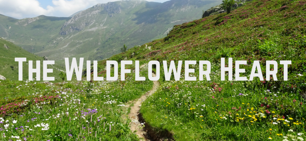 The Wildflower Heart